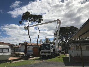 Contact Inlet Tree Services for cherry picker hire, Tree removal, stump grinding, arborist, block clearing, mulch, firewood sales in Sanctuary Point, Sussex Inlet, Bay & Basin, Jervis Bay, Vincentia and around the Shoalhaven.